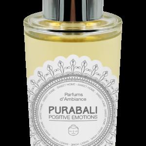 Parfum d'ambiance réconfortant Vanille de Kintamani