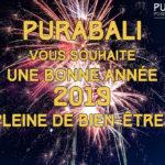 Les perspectives de PURABALI pour 2019