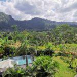 Une immersion à Bali…
